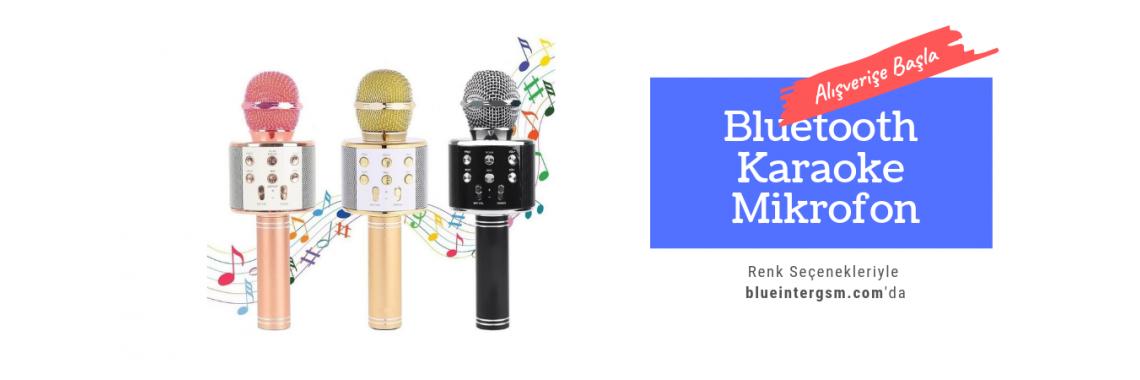 Karaoke Mikrofonlar
